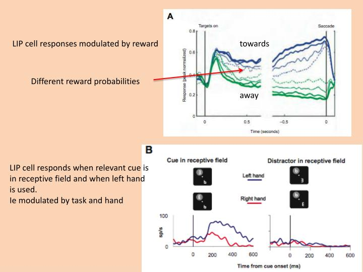 LIP cell responses modulated by reward
