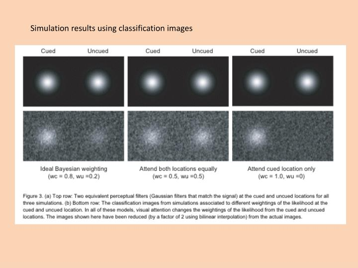 Simulation results using classification images
