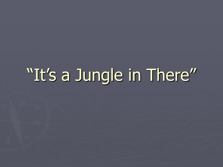 """It's a Jungle in There"""