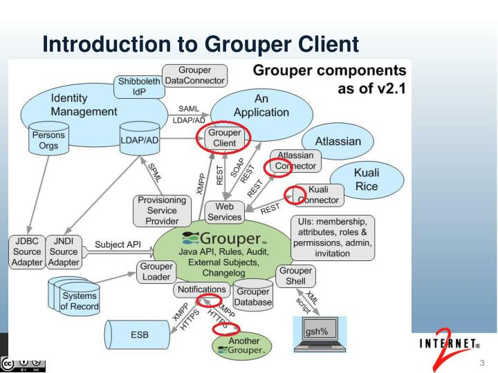 Introduction to grouper client
