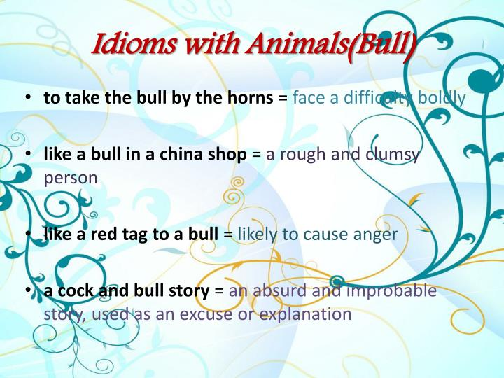 Idioms with animals bull