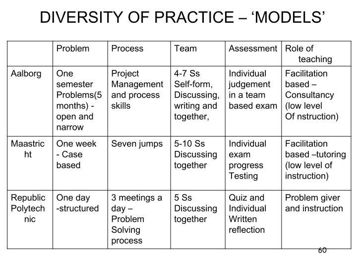 DIVERSITY OF PRACTICE – 'MODELS'