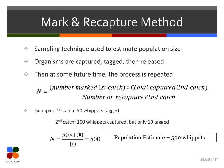 Mark & Recapture Method