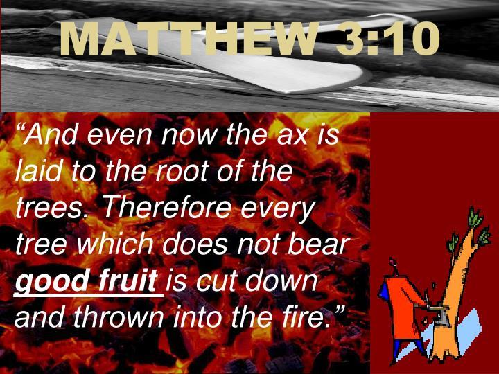 MATTHEW 3:10