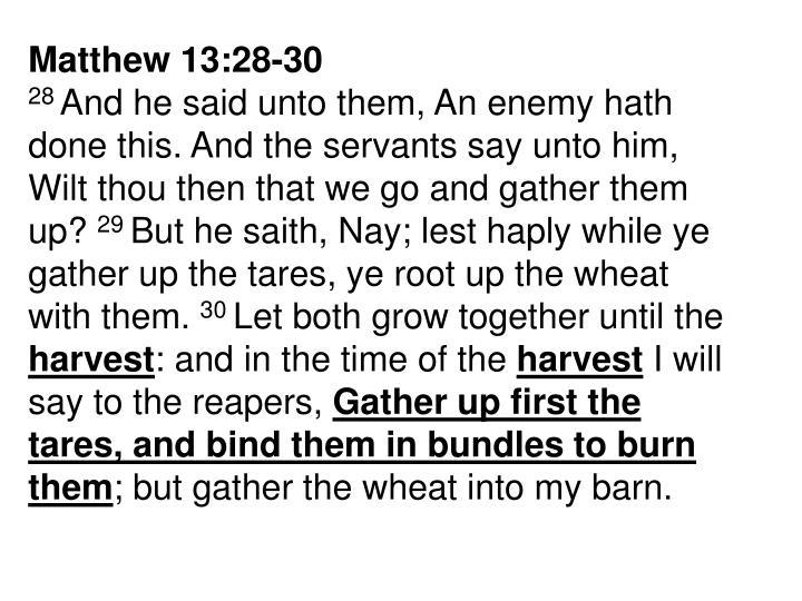 Matthew 13:28-30