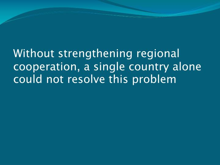 Without strengthening regional cooperation, a single country alone could not resolve this problem