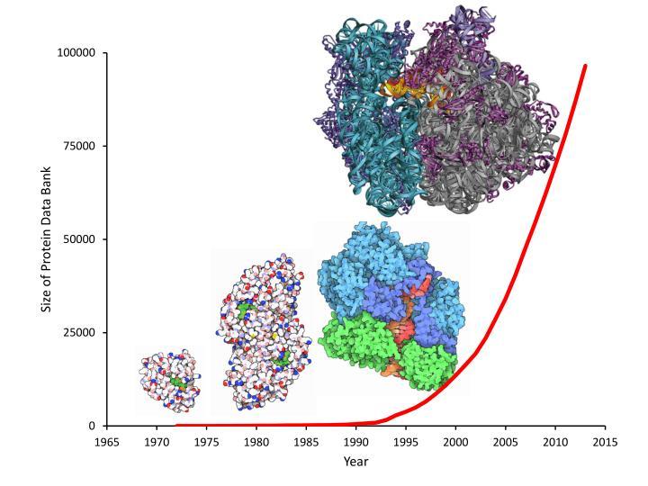 HIV Protease