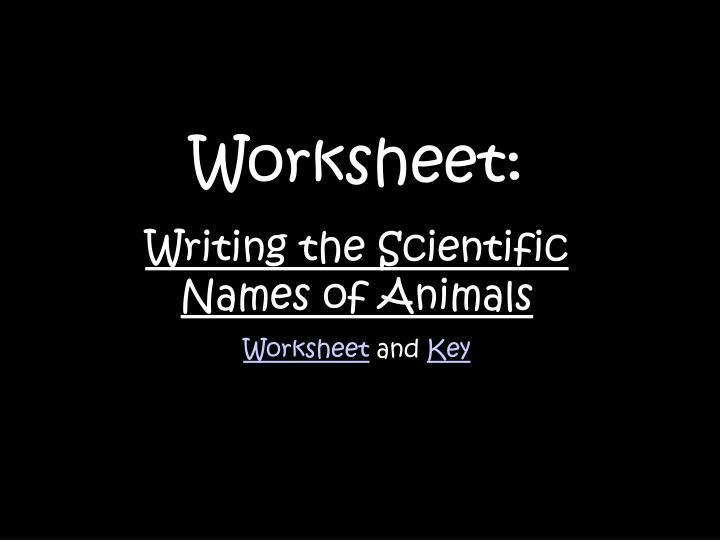 Worksheet: