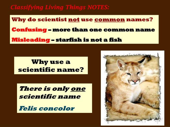 Classifying Living Things NOTES: