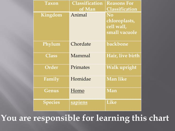 You are responsible for learning this chart