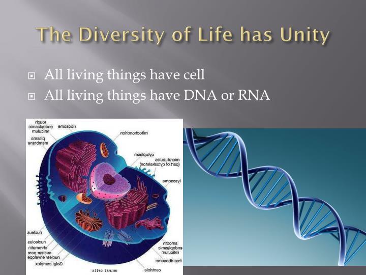 The Diversity of Life has Unity