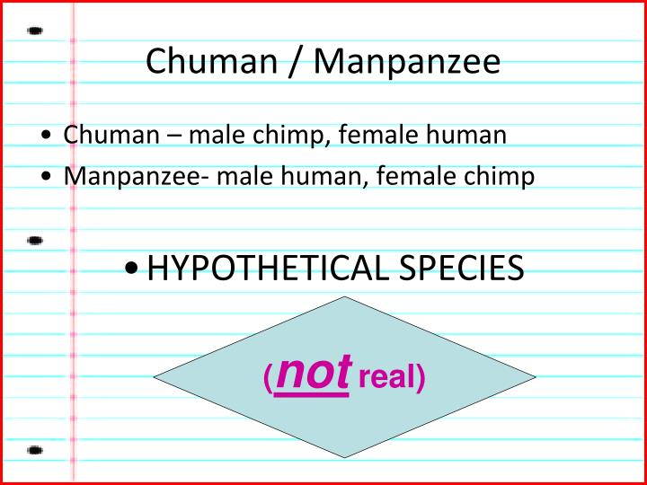 Chuman / Manpanzee