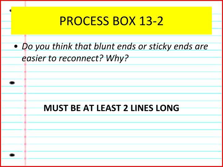 PROCESS BOX 13-2