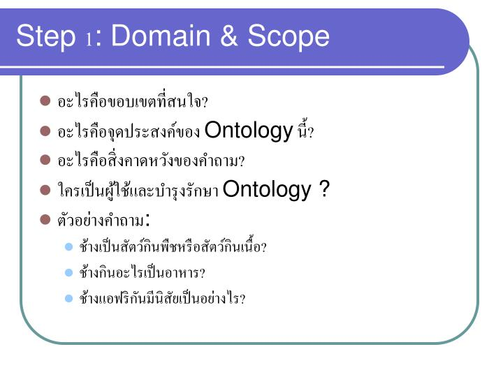 Step 1: Domain & Scope