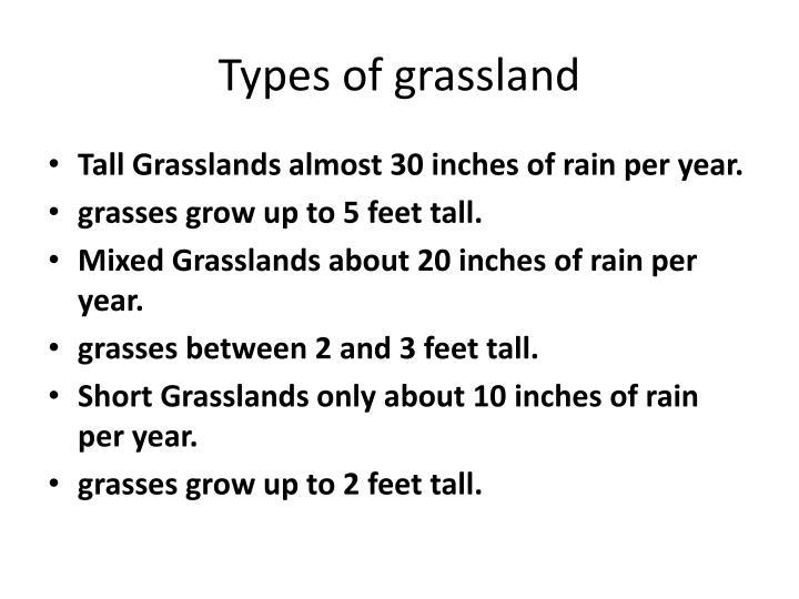 Types of grassland