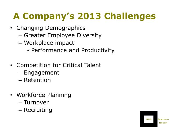 A Company's 2013 Challenges