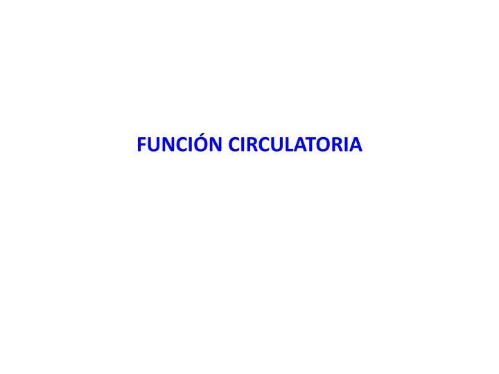 FUNCIÓN CIRCULATORIA