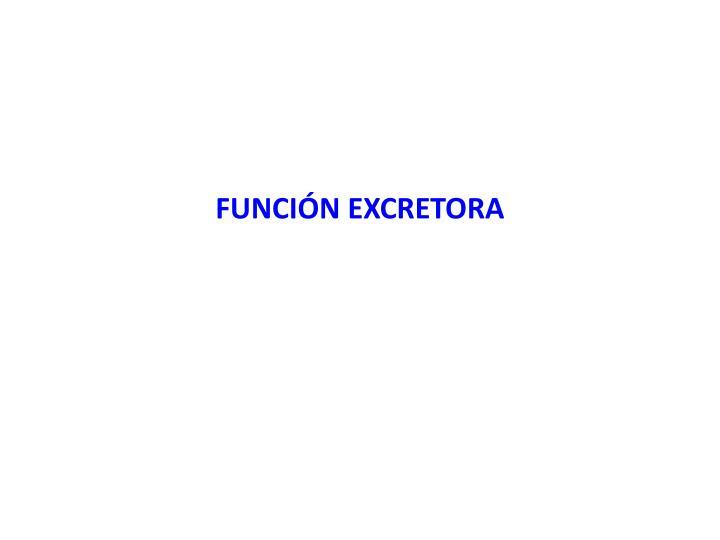FUNCIÓN EXCRETORA