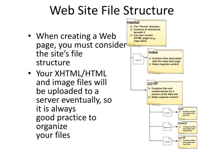 Web Site File Structure