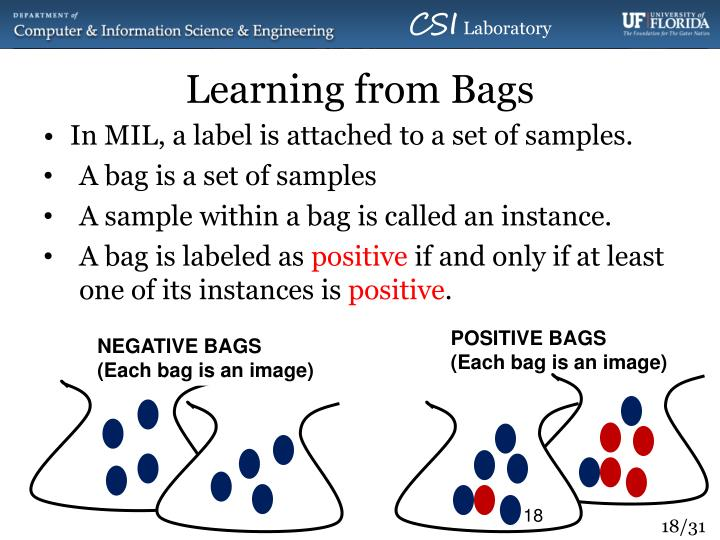 Learning from Bags