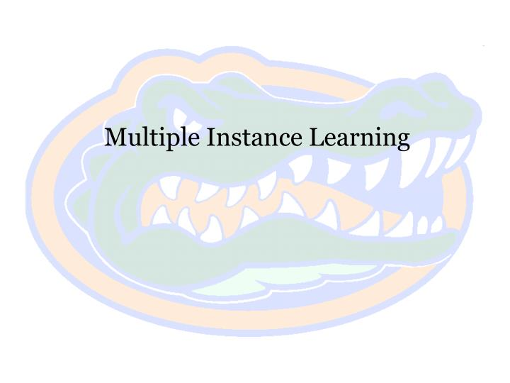 Multiple Instance Learning