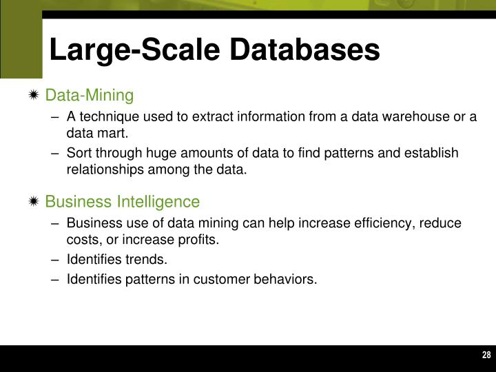 Large-Scale Databases