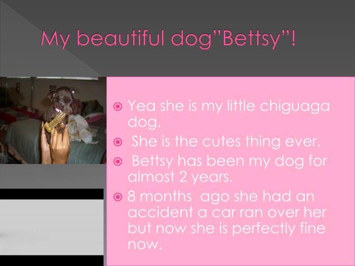 My beautiful dog bettsy