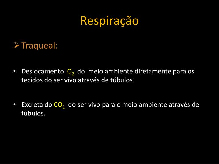 Respiração