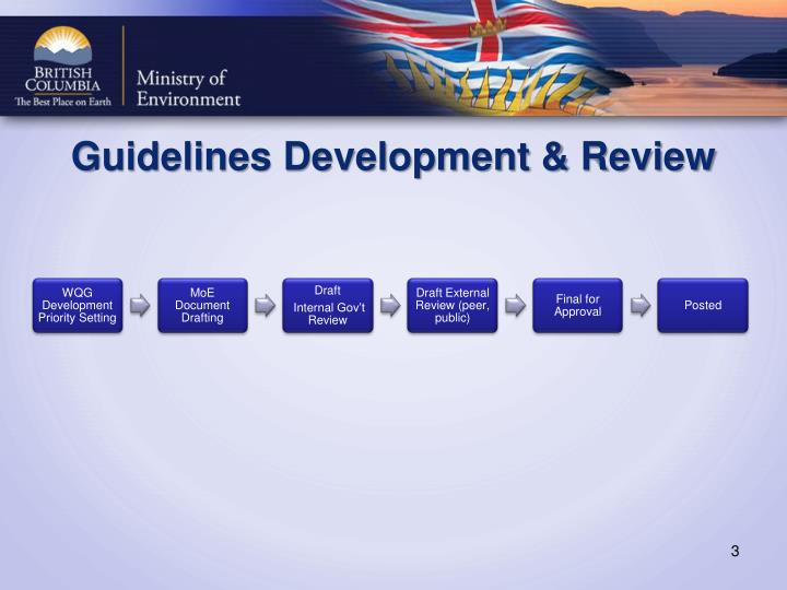 Guidelines development review
