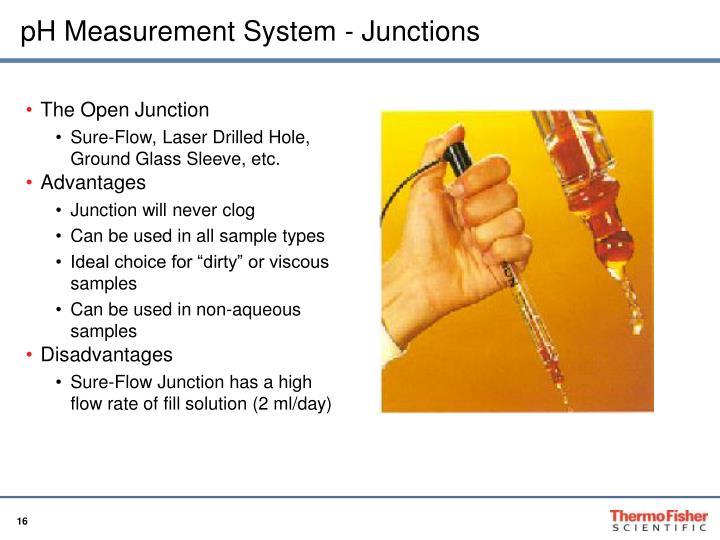 pH Measurement System - Junctions