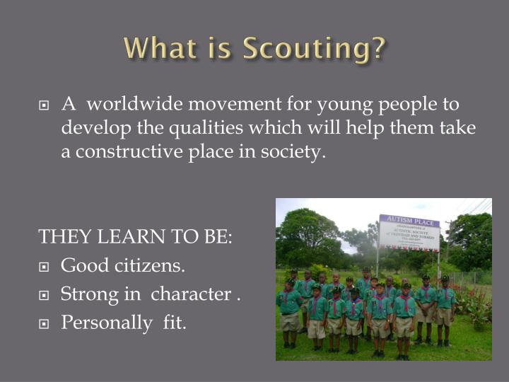 What is scouting