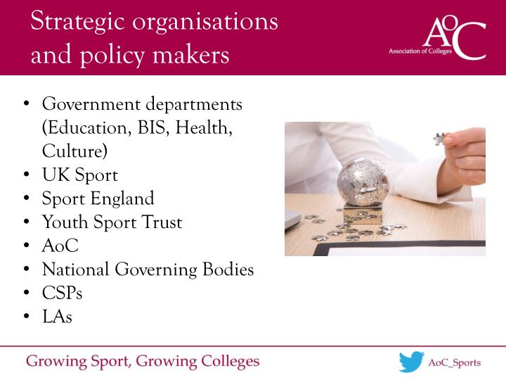 Strategic organisations        and policy makers