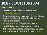 10 8 equilibrium2