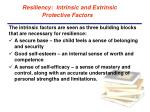 resiliency intrinsic and extrinsic protective factors