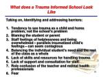 what does a trauma informed school look like
