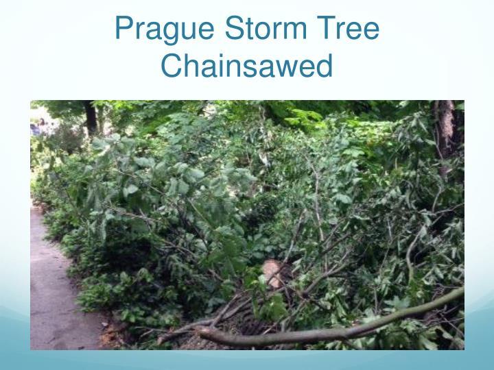 Prague Storm Tree