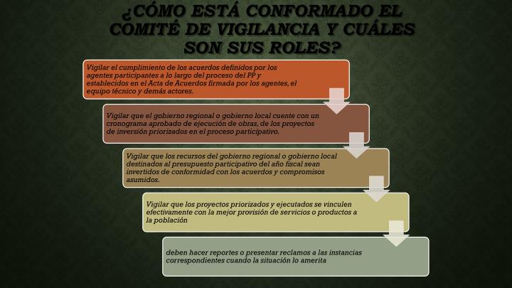 ¿Cómo está conformado el Comité de Vigilancia y cuáles son sus roles?
