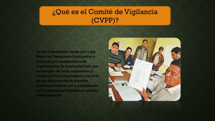 ¿Qué es el Comité de Vigilancia (CVPP)?