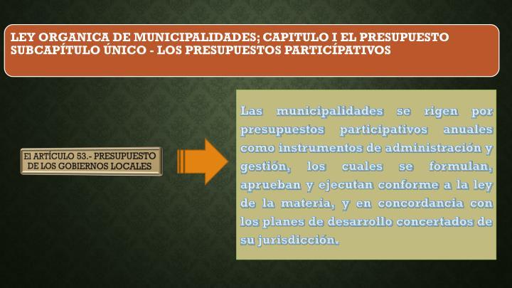 Las municipalidades se rigen por presupuestos participativos anuales como