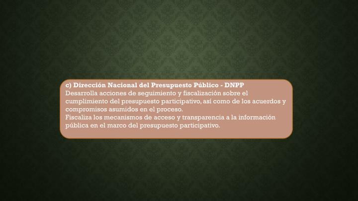 c) Dirección Nacional del Presupuesto Público - DNPP