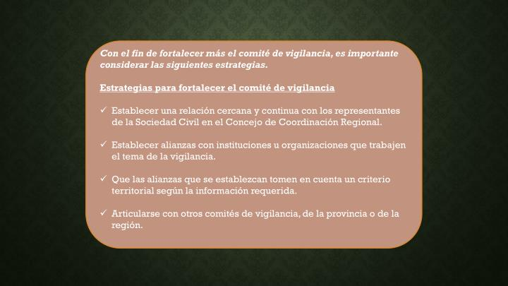 Con el fin de fortalecer más el comité de vigilancia, es importante considerar las siguientes estrategias.