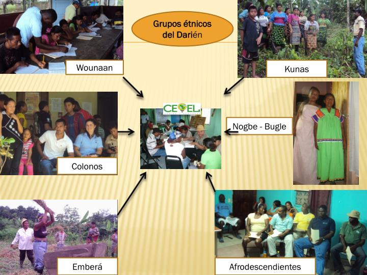 Grupos étnicos del Dari