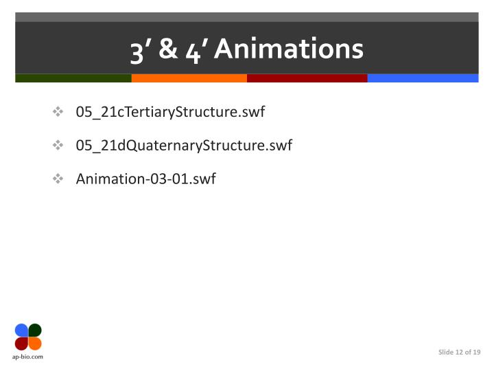 3' & 4' Animations