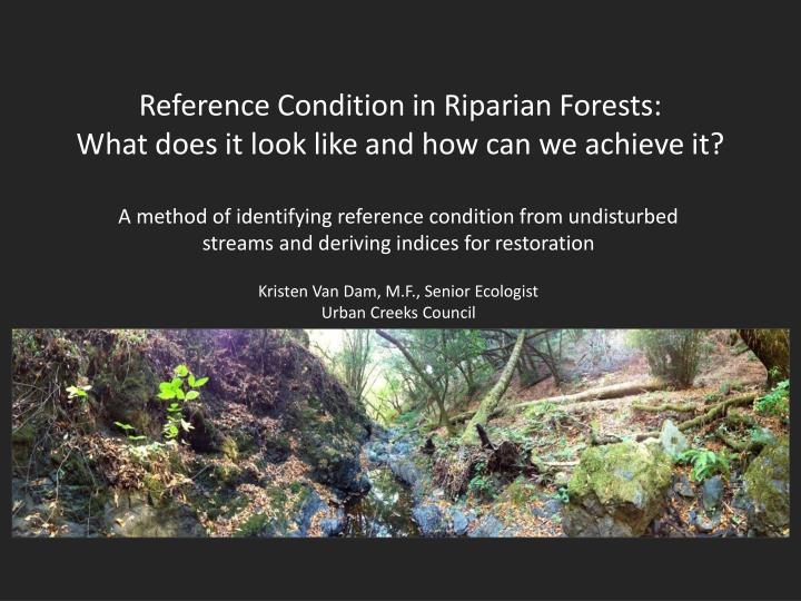 reference condition in riparian forests what does it look like and how can we achieve it