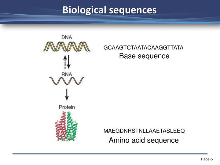 Biological sequences