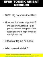 efek toksik akibat merkuri1