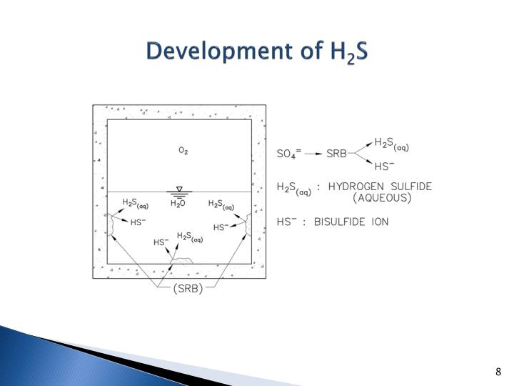 Development of H