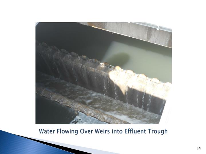 Water Flowing Over Weirs into Effluent Trough