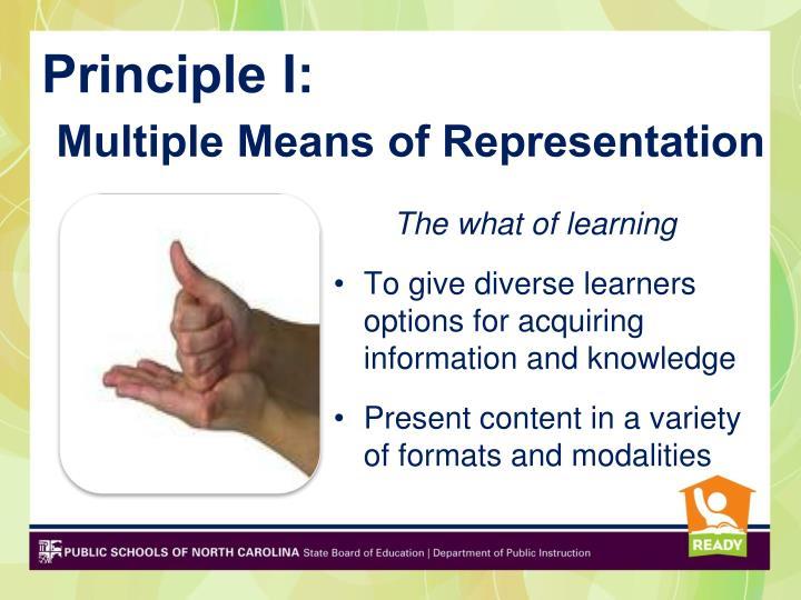 Principle I: