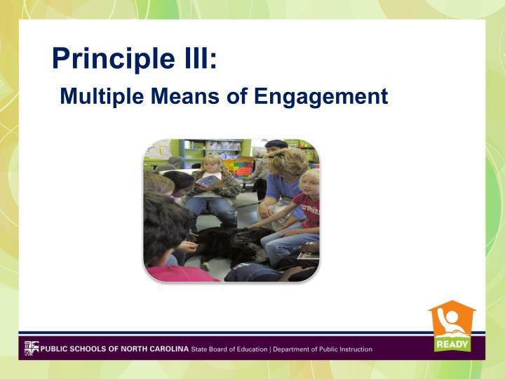 Principle III: